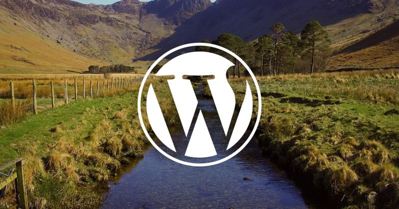 My Current WordPress Workflow